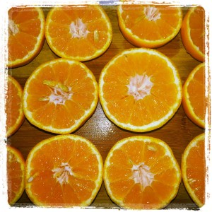 SlicedOranges